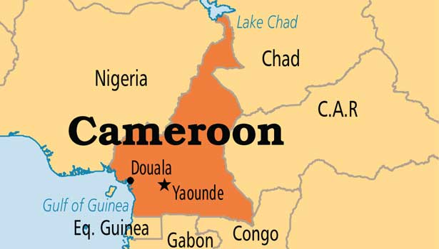 201706230603064408_Six-killed-in-Cameroon-suicide-attack_SECVPF