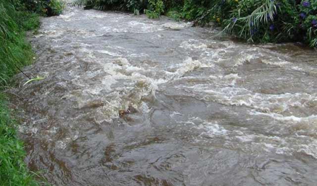 1519466250-river